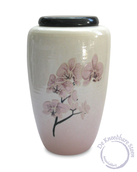 Urn met roze orchidee